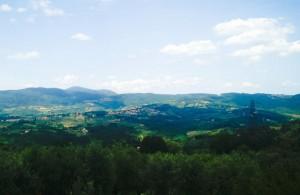 Fiesole1